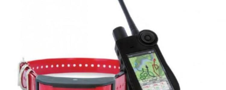 GPS-ошейник (трекер) для собак цена, отзывы