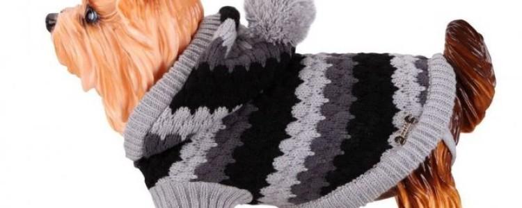 Вязаная одежда для маленьких собак — схемы спицами