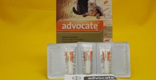 Капли для кошек «Адвокат»: инструкция по применению препарата от блох, глистов и клещей