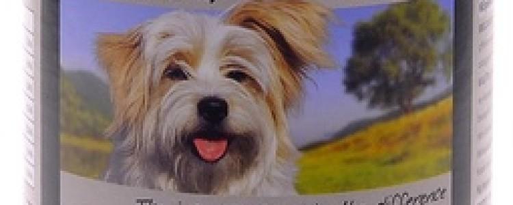 Belcando (Белкандо): корма для собак и кошек: виды, плюсы, минусы