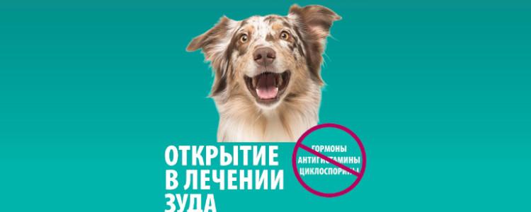 Апоквел для собак инструкция по применению: дозировка, побочные действия, состав