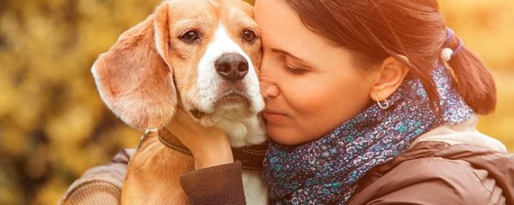 Боязнь собак: как правильно называется фобия, причины, как избавиться от страха перед животными и завести питомца