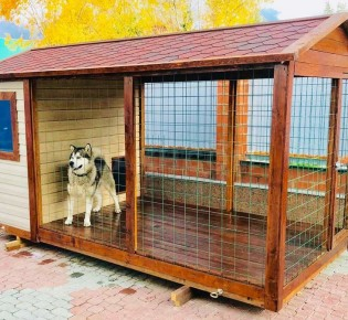 Вольер для собаки: как сделать своими руками красивый теплый уличный загон с зимником — чертежи, размеры, фото, проекты, советы, как построить самому