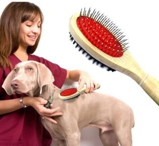 Уход за шерстью собаки: как и чем правильно вычесывать, расчески для длинной, короткошерстных, гладкошерстных, как расчесать колтуны, средства — шампунь, спрей