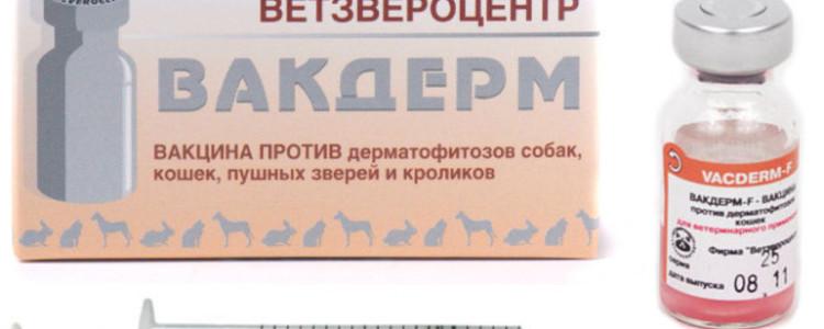 Вакдерм вакцина для кошек и собак